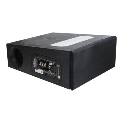 SOLUTION SUB5 MINI XPANDER 2017 - NOW (WITH AMPLIFIER M9)